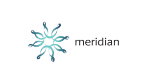 ico-meridian-ent-connect.png